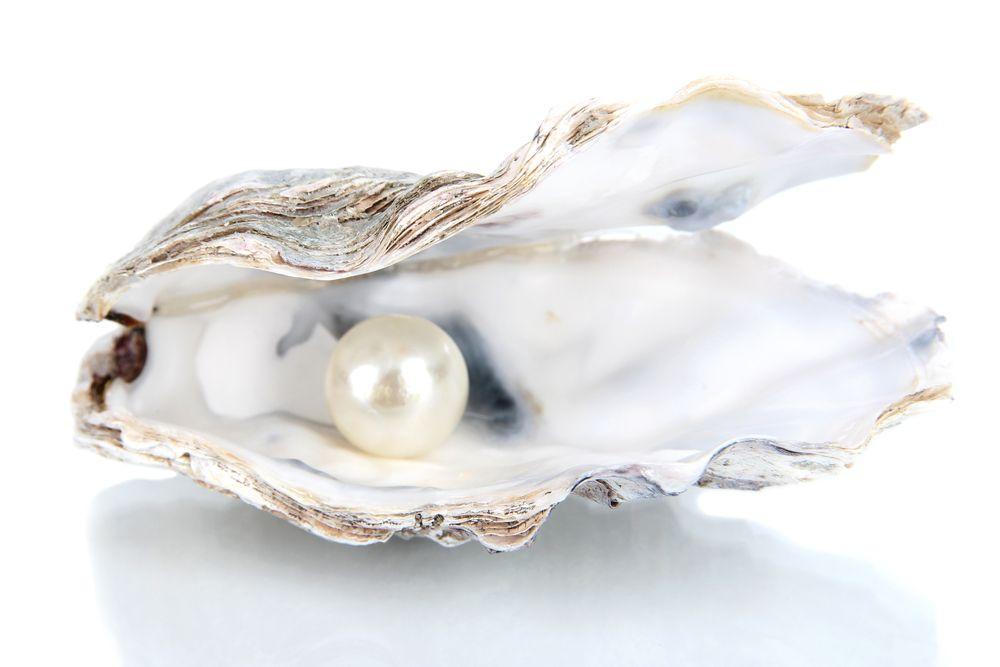 dalmatian-pearls